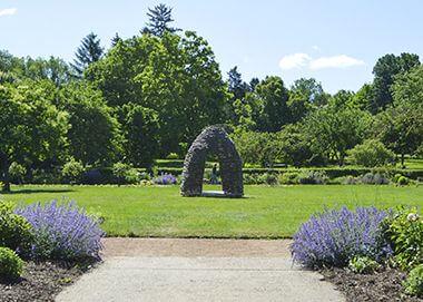 Lyndale-Park-Garden_Thicket_
