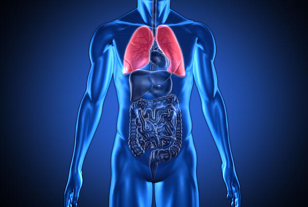 lungs and copd in seniors
